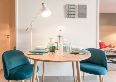 terra-viva-nexity-appartement-temoin-decoration-interieur-nexity-toulouse---agnes-luthier-web-22