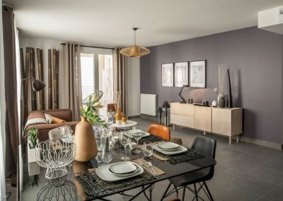 nexity-so-park-decoration-appartement-temoin-agnes-luthier-157-12